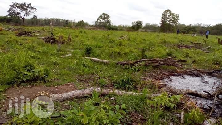 10 Acres Of Farm Land For Sale | Land & Plots For Sale for sale in Odeda, Ogun State, Nigeria