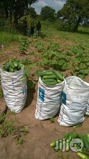 Wholesale Cucumber In Bags | Meals & Drinks for sale in Plateau State, Jos