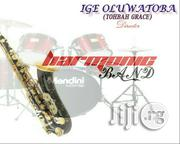 Musician. High Life And Juju   Arts & Entertainment CVs for sale in Ondo State, Akure