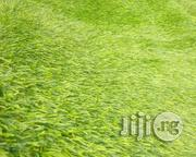 New & High Quality Artificial Green Grass Carpet For Homes & Gardens.   Garden for sale in Lagos State, Surulere