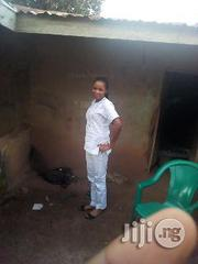 Other CV teacher   Teaching CVs for sale in Benue State, Kwande