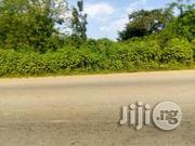 40,000 Acres Farm Land At Alaka, Fiditi, Oyo-ibadan Express | Land & Plots For Sale for sale in Oyo State, Oyo