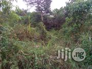 Acres Of Dry Land For Sale At Ikire Osun State | Land & Plots For Sale for sale in Osun State, Aiyedade