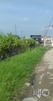 3 Plots Of Land Along The Road Of Ago-palace Way Isolo For Lease | Land & Plots for Rent for sale in Lagos State, Isolo