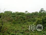 Multipirpose 30 Acres at Osun State | Land & Plots For Sale for sale in Osun State, Aiyedade