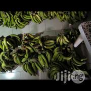 Fresh Plantain | Meals & Drinks for sale in Lagos State, Lekki Phase 1