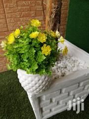 Affordable Mini Beautiful Potted Flowers | Garden for sale in Bauchi State, Gamawa