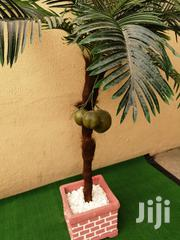 Synthetic Tree Plant Nationwide   Garden for sale in Adamawa State, Mayo-Belwa