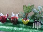 Order For Your Vase Plant Nationwide   Home Accessories for sale in Cross River State, Abi