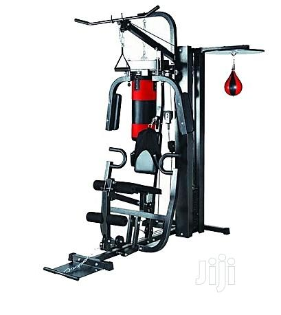 American Fitness Station Gym With Complete Accessories
