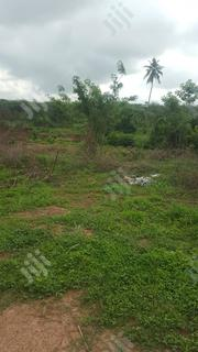 100 Plots Of Farm Land At Ijare For Sale | Land & Plots For Sale for sale in Ondo State, Akure