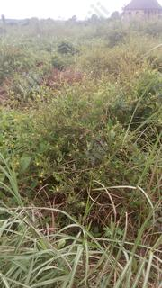 Plots of Lands for Sale | Land & Plots For Sale for sale in Anambra State, Onitsha