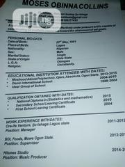 Other CV | Arts & Entertainment CVs for sale in Lagos State, Lekki Phase 2