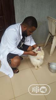 Experience And Swift Vet Doctor | Pet Services for sale in Lagos State