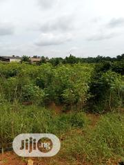 35 Plot of Land Along Onitsha Enugu Express Way | Land & Plots For Sale for sale in Anambra State, Oyi