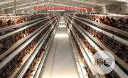 China Factory Battery Poultry Cage For Layers Boilers With 4 Tires | Farm Machinery & Equipment for sale in Lagos State, Apapa