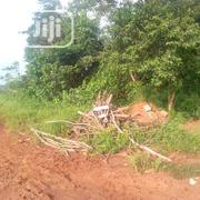Plot And Acres Of Land At Isiu Town For Sale | Land & Plots For Sale for sale in Lagos State, Ikorodu