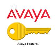 AVAYA License Keys   Computer & IT Services for sale in Lagos State