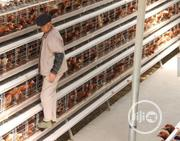 China Factory Best Galvanized Battery Cages For Laying Hens | Farm Machinery & Equipment for sale in Gombe State, Akko