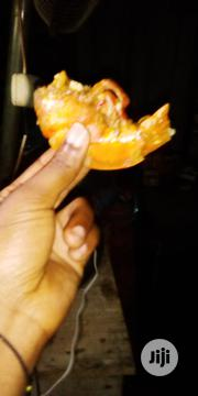 Fresh Tiger Prawns | Livestock & Poultry for sale in Cross River State, Calabar
