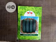 Monalisa F1 Cucumber (1000 Seeds) | Feeds, Supplements & Seeds for sale in Delta State, Uvwie
