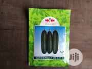 Greengo F1 Cucumber Seed | Feeds, Supplements & Seeds for sale in Delta State, Uvwie