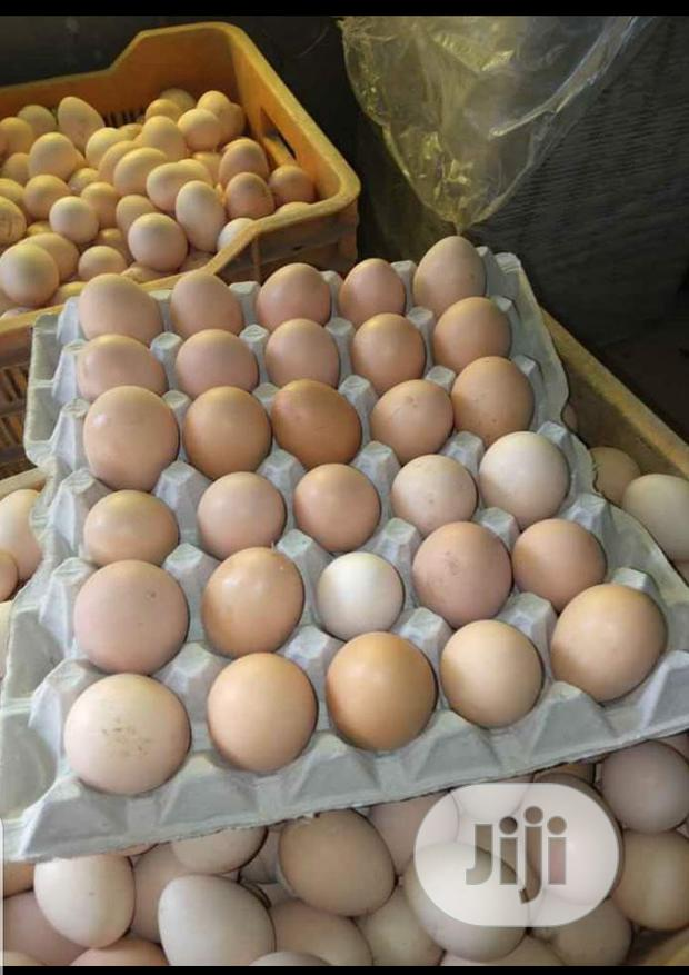 Archive: Farm Fresh Eggs For Sale