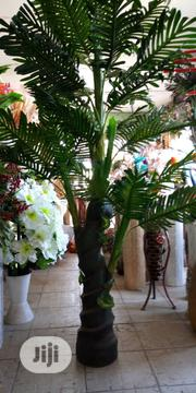 High Quality & New Outdoor Garden Palm Tree Flower. | Garden for sale in Lagos State, Ikeja