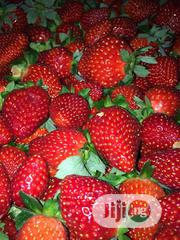 Wholesale Fresh Strawberry Bulk Fresh Strawberries PLUS FREE 1KG | Meals & Drinks for sale in Plateau State, Jos