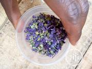 Lavender Leaves, Flowers Or Plant | Feeds, Supplements & Seeds for sale in Abuja (FCT) State, Kubwa
