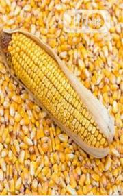 Dried Corn For Animal Feed Production | Feeds, Supplements & Seeds for sale in Abuja (FCT) State, Dei-Dei