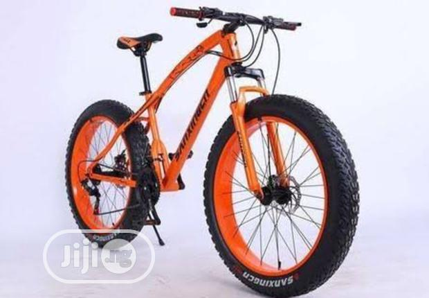 26inches Adult Bicycle
