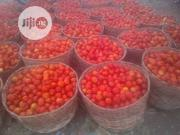 Tomatoes | Meals & Drinks for sale in Katsina State, Funtua