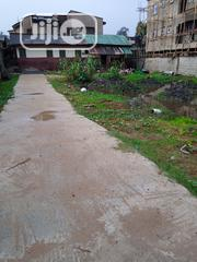 A Land For Lease At Jakande Estate Oke-isolo. With Receipt And Survey. | Land & Plots for Rent for sale in Lagos State, Isolo