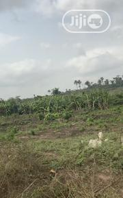 Arable Agric Land In Ogun State | Land & Plots For Sale for sale in Ogun State, Odeda