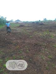 12 Acers of Land for Sale at Oreyo Road Igbogbo Area Ikorodu Lagos | Land & Plots For Sale for sale in Lagos State, Ikorodu
