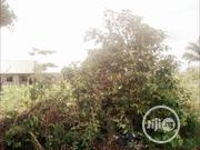 FOR SALE: 2 Plots Of Land At Eneka Estate, Eneka, Portharcourt | Land & Plots For Sale for sale in Rivers State, Port-Harcourt