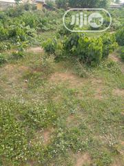 A Plots of Land at Mosoke-Lakoto,Ajibode UI Axis | Land & Plots For Sale for sale in Oyo State, Ibadan