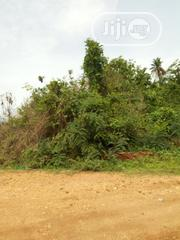 50acres Of Land @ Operinde-akinwaare Area Of Ido IB, Oyo State | Land & Plots For Sale for sale in Oyo State, Ibadan