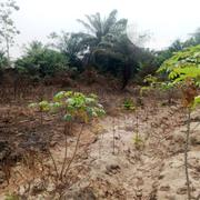 9 Plots Of Dry Land At  Ibeju Lekki With Gate And Documents Gazetted  | Land & Plots For Sale for sale in Lagos State, Ibeju
