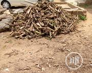 Farm Set Up   Landscaping & Gardening Services for sale in Oyo State, Oluyole