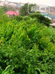 Land in Idigbaro | Land & Plots For Sale for sale in Oyo State, Ibadan