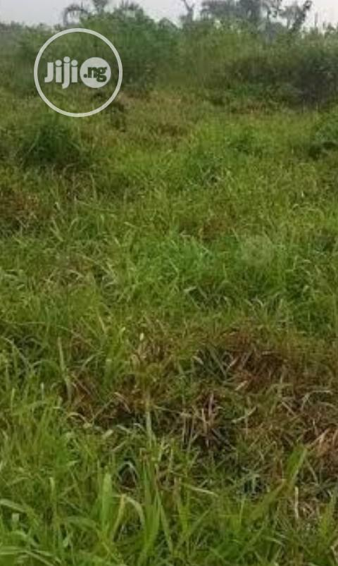 KARSANA SOUTH ,20 Hectares For Sale | Land & Plots For Sale for sale in Gwarinpa, Abuja (FCT) State, Nigeria