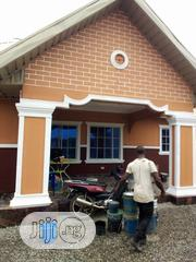 Wall Screeding and Painting   Building & Trades Services for sale in Delta State, Ika South