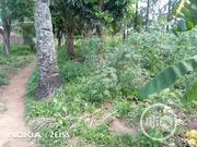Massive Land in Ibagwa Nike | Land & Plots For Sale for sale in Enugu State, Enugu