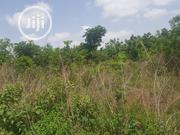 Land for Sale | Land & Plots For Sale for sale in Kwara State, Irepodun-Kwara