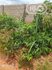 Two Plot Of Land With Fence For Lease Or Rent | Land & Plots for Rent for sale in Anambra State, Awka