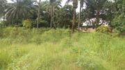 Three Plots of Land 4 Sale at Ndiowu/Amaokpala MELEKH OLAM CONSULTIUM | Land & Plots For Sale for sale in Anambra State, Orumba